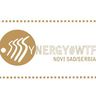 """Završen pozorišni festival """"SINERGY #WTF"""""""